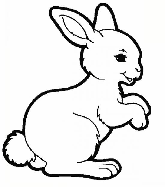 داستان صوتی خرگوشه و خونه تکونی